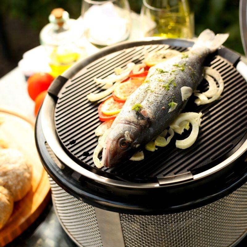 COBB mini tafel BBQ met forel
