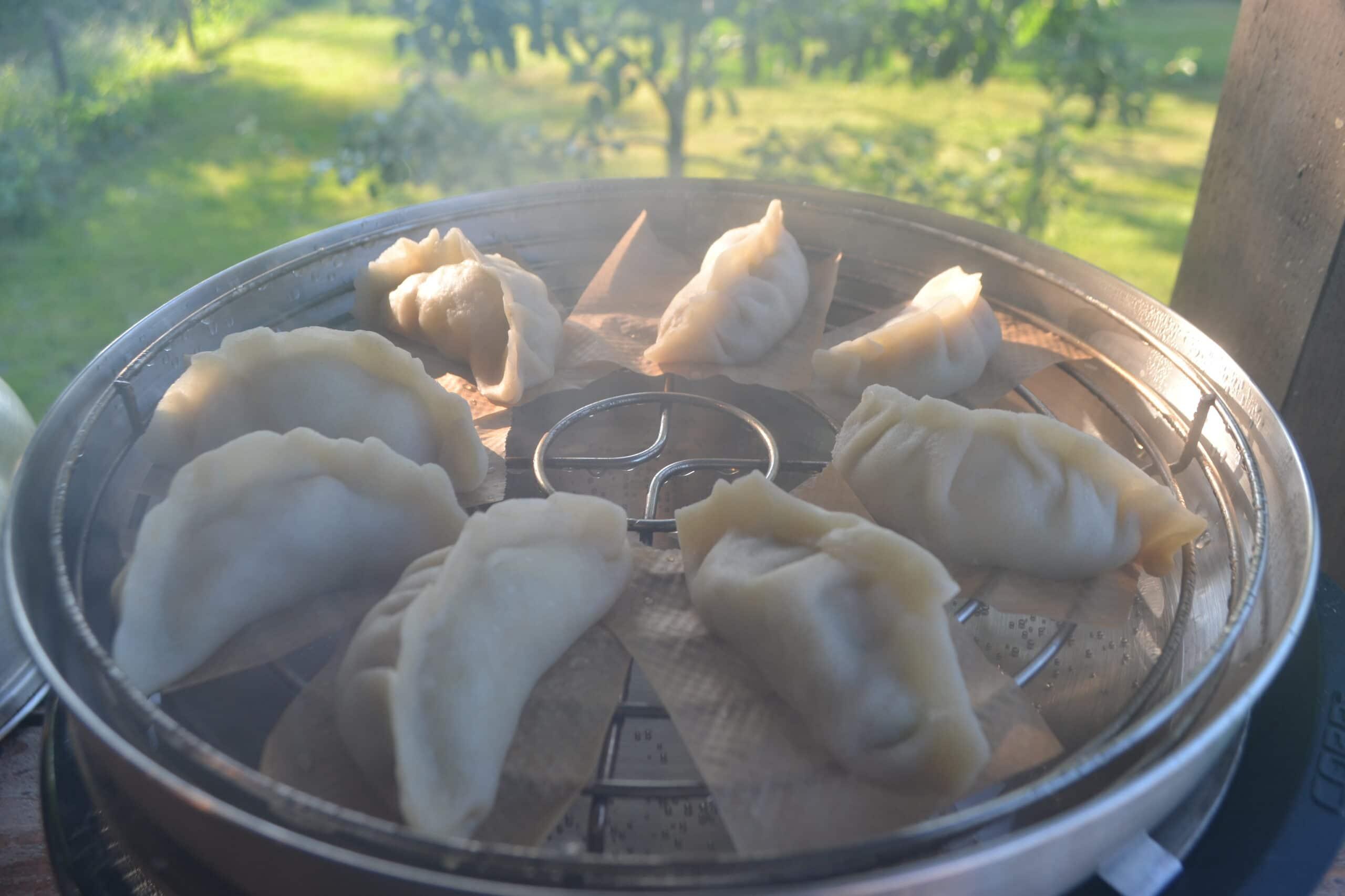 BBQ Inspiratie Dumplings COBB 13
